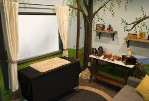viewing room with window and tree designs on the walls