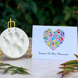 white clay paw print with card