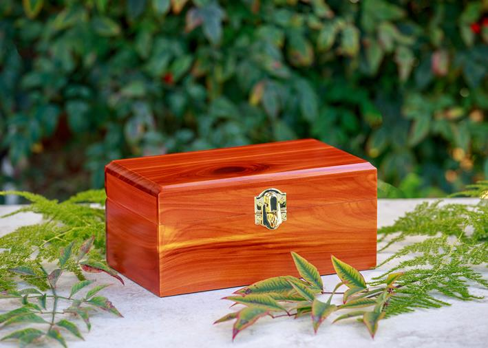 one aromatic cedar chest urn