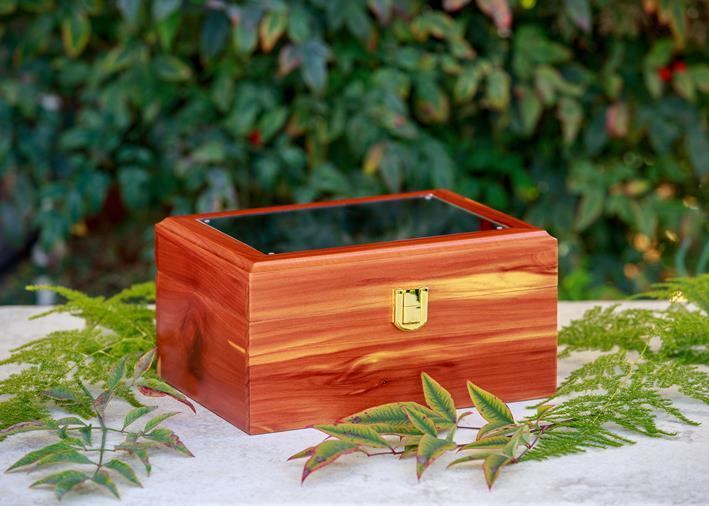 one cedar memory chest
