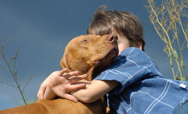 young boy wearing blue hugging his dog